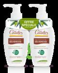 Acheter Rogé Cavaillès Hygiène intime Soin naturel Toilette Intime Sécheresse 2Fl/250ml à PARIS