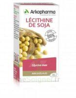 Arkogélules Lécithine de soja Caps Fl/45