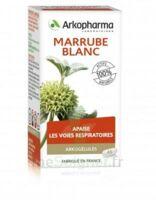 Arkogélules Marrube Blanc Gélules Fl/45 à PARIS
