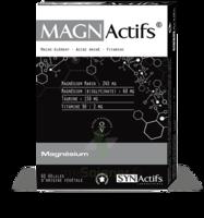 Synactifs Magnactifs Gélules B/60