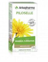 Arkogélules Piloselle Gélules Fl/45 à PARIS