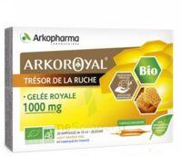 Arkoroyal Gelée Royale Bio 1000 Mg Solution Buvable 20 Ampoules/10ml à PARIS