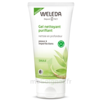 Weleda Gel nettoyant purifiant 100ml à PARIS