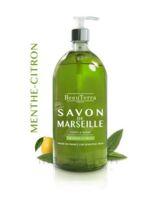 Beauterra - Savon De Marseille Liquide - Menthe/citron 300ml à PARIS