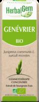 Herbalgem Genevrier Macerat Mere Concentre Bio 30 Ml à PARIS