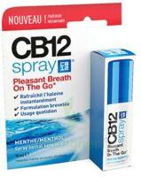 CB 12 Spray haleine fraîche 15ml à PARIS
