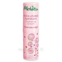 Melvita Nectar de Roses stick lèvres hydratant Bio à PARIS