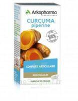 Arkogelules Curcuma Pipérine Gélules Fl/45 à PARIS