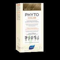 Phytocolor Kit coloration permanente 8.3 Blond clair doré à PARIS