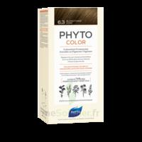 Phytocolor Kit Coloration Permanente 6.3 Blond Foncé Doré à PARIS