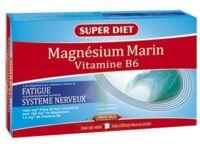 Superdiet Magnésium Marin B6 Solution buvable 20 Ampoules/15ml à PARIS