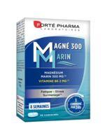 Magné 300 Marin (2 mois) à PARIS