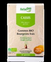 Herbalgem Gomme cassis bio B/24 à PARIS