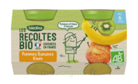 Blédina Les Récoltes Bio Pommes Bananes Kiwis 2 Pots/130g à PARIS