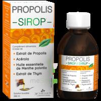 3 CHENES PROPOLIS Sirop Fl/200ml à PARIS