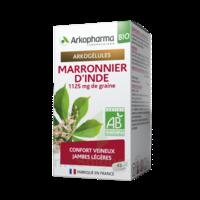 Arkogélules Marronnier D'inde Bio Gélules Fl/45 à PARIS